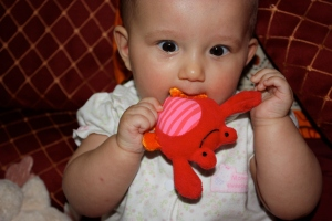 Leila being a little crabby, and chewing on Tony the crab.